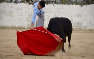 corrida_elrafi