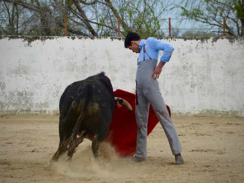 tentadero_corrida