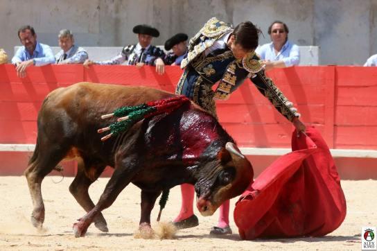 naturelle_corrida