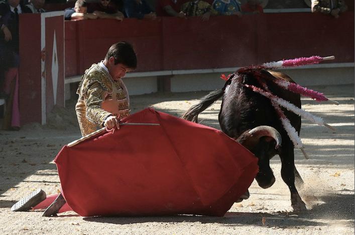 elrafi_toreo_rodillas