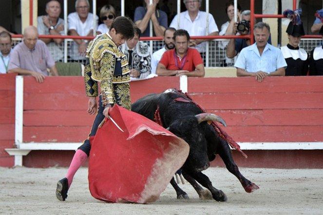 elrafi_torero