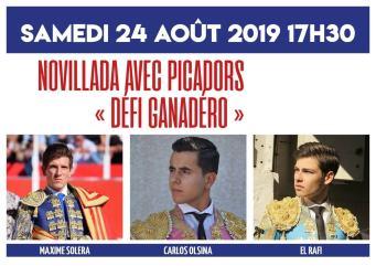 cartel_novillada_saint_gilles_2019