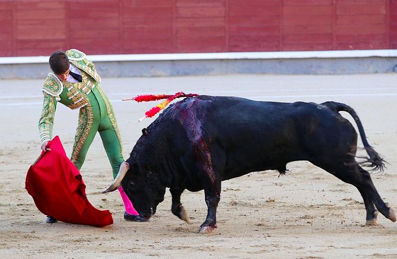 El Rafi à Las Ventas