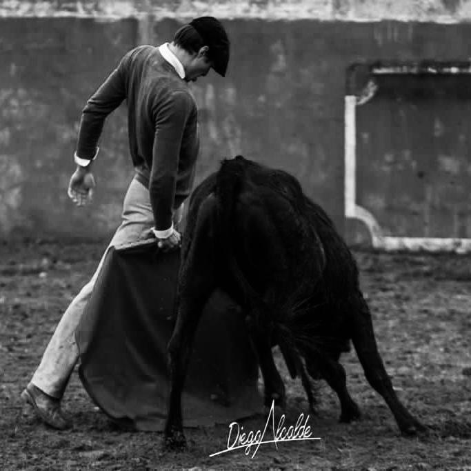 elrafi_ganaderia_el_Madroñal
