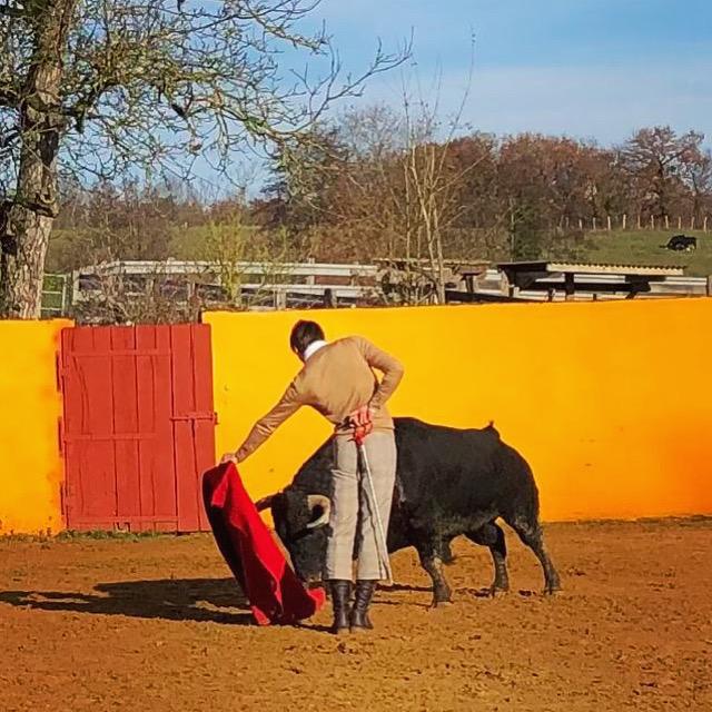 elrafi_Camino_de_Santiago